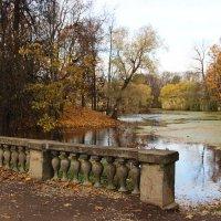 Александровский парк :: Светлана Дмитриева