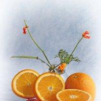 С апельсинами и эшшольцией. :: Лилия *