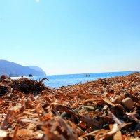 Берега, где Афродита вышла из пены морской (так утверждают мифы) :: Anastasia Schegoleva
