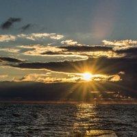 крокодил солнце в небе проглотил :: Анатолий Корнейчук