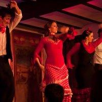 На концерте фламенко. Севилья, Андалузия - 5 :: Lmark