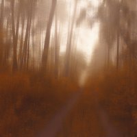 по лесу :: Алексей Карташев