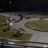 Рогатый в парке :: Александр Борисов