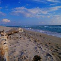 возле моря всегда находишь умиротворение :: Андрей Козлов