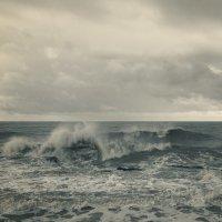 Волна :: Lidiya Dmitrieva