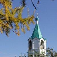 Церковь в Боровском :: Ольга Чазова