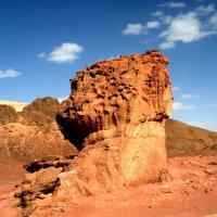 Лучше гор могут быть только горы.. :: Igor P