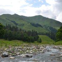 Абхазия,горная речка :: Лариса Красноперова