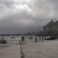 Черный вихрь в Питере. :: Виталий Авакян