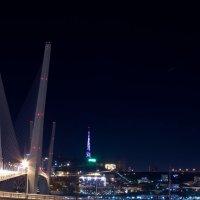 Владивосток. Мост через бухту Золотой Рог. :: Оля К