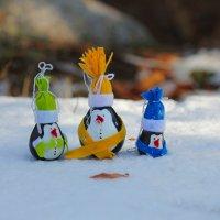 penguins :: Ekat Grigoryeva