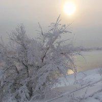 Мороз и солнце - день чудесный ! :: Нина северянка