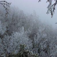 неожиданная зима :: Wan Buuren