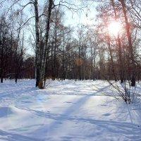 Прийдёт и солнце! :: Яков Реймер