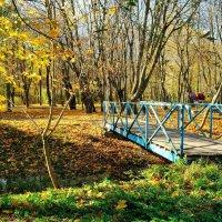 Мостик в осень :: Николай Климчук