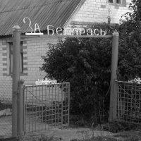Патриотизм :: Андрей Самуйлов