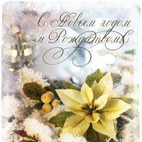 Новогодний декор. Зимняя пуансеттия. Открытка. :: Ульяна Альбинская