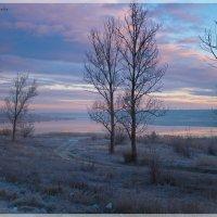 Ранне утро :: Роман Хоменко