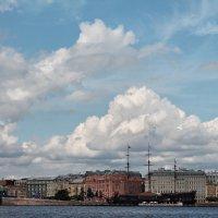 Санкт-Петербург :: Светлана Белоусова