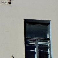 """""""...я здесь, под окном..."""" :: sv.kaschuk"""