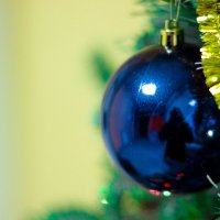 Новогоднее настроение :: Булат Бухарский
