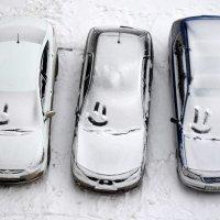 улыбнитесь - зима пришла! :: Евгений Фролов