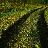 Дорога :: Игорь Герман