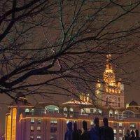 Огни города :: Максим Коротовских