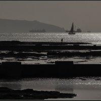 Вечером на море. :: михаил