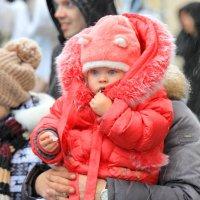Любопытный малыш :: Дмитрий Сушкин