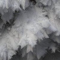 Ледяные перья зимы. :: Сергей Адигамов