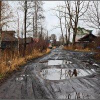 Зимы ждала... :: Владимир Прынков
