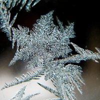 Рисует узоры мороз на стекле :: ~ Лидия ~