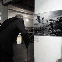 Фотографии  все возрасты покорны :: sv.kaschuk