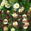 Поздравление всем Татьянам :: татьяна