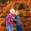 Я люблю тебя Осень Осень) :: Александр Халаев