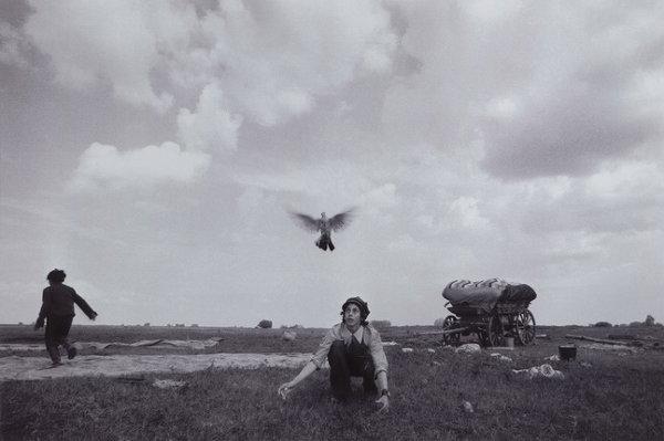 «ТАСМА. Казанская фотогруппа»