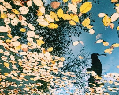 Фотоконкурс «Отражения реальности»