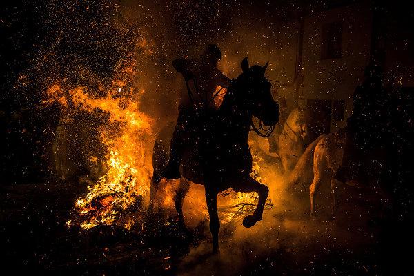Объявлены финалисты международного конкурса фотожурналистики имени Андрея Стенина
