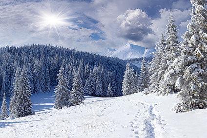Подведены итоги конкурса«Зимний пейзаж (2016)»