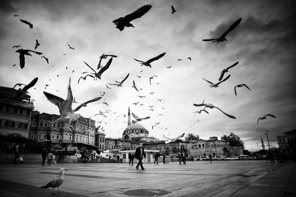 Стамбул в уличных фотографиях Мустафы Дедеоглу
