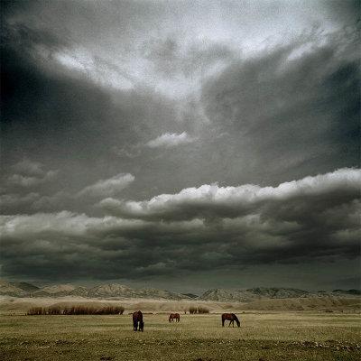 Фотограф Майкл Истмен