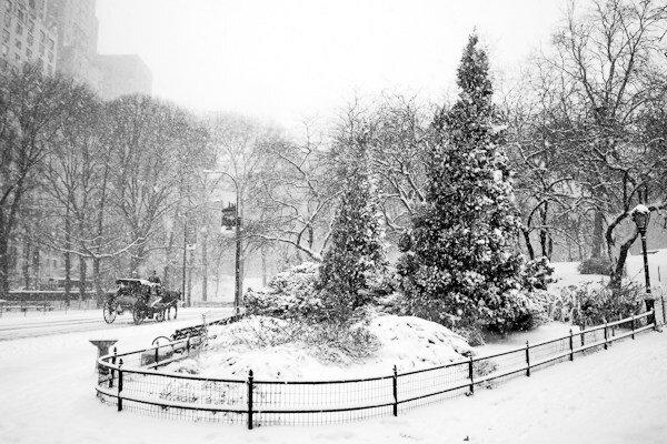5 необычных советов по снежной фотографии, которые могут изменить ваши зимние снимки