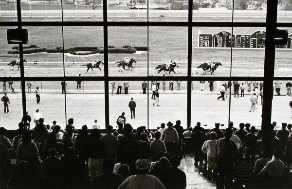 В мире конных скачек