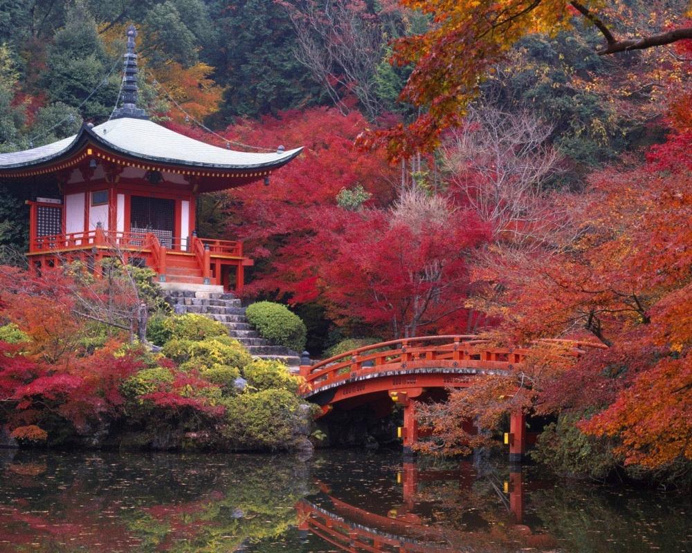 Картинки осенних листьев для вырезания цветные - 64177