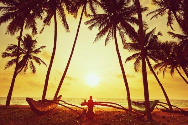 пляжные девушки фото