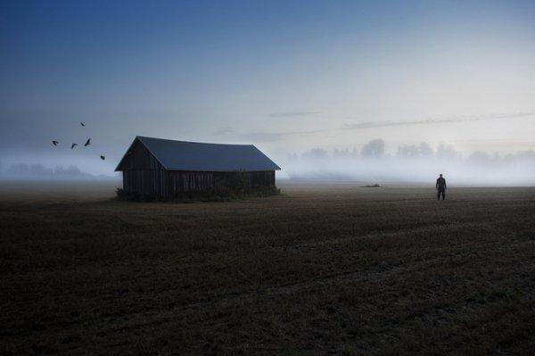 Северная природа в фото 3