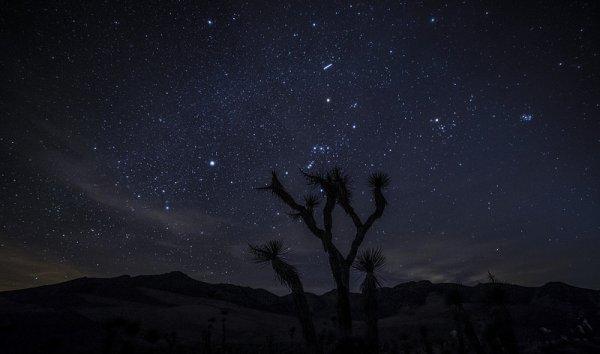 фото звёздного неба посмотреть 7
