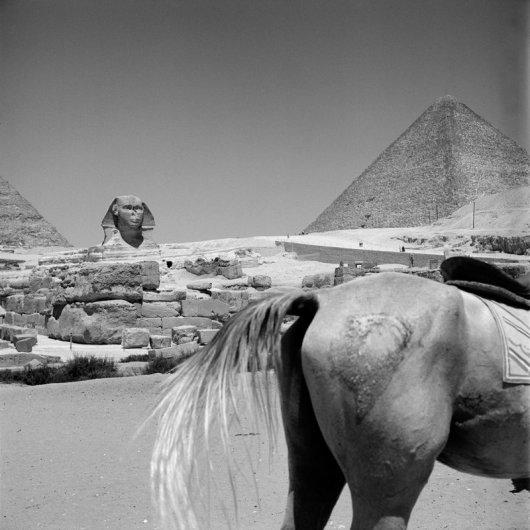 """Фотограф Вивиан Майер (Vivian Maier) (рубрика """"Вдохновение"""") - №42"""