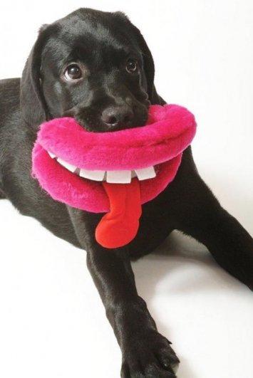 игрушки для собак фото